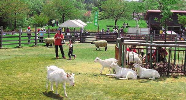 東山 ファミリー ランド 無料で遊べる家族におススメの東山ファミリーランドの魅力